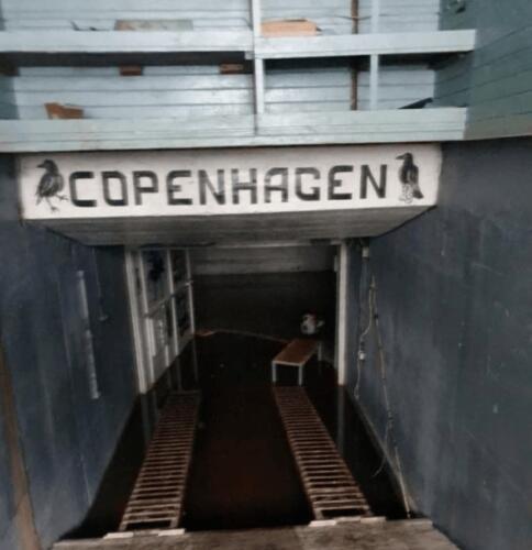 Что известно о подземной тюрьме в Ленинградской области, которую уже успели снести