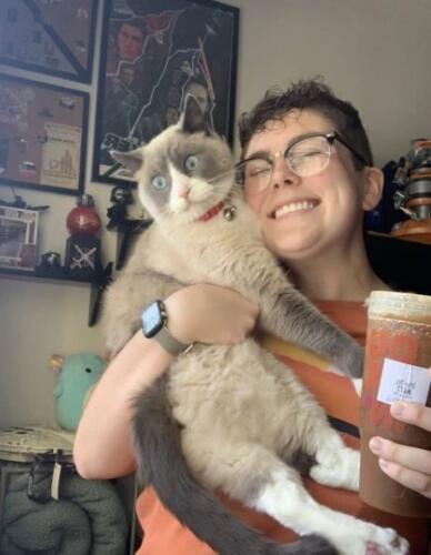 Хозяйка приделала швабру к ошейнику кота. Теперь она не боится, что он выпадет с балкона