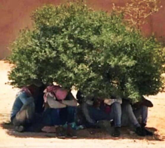 Что будет с машиной при 70 градусах жары? Жители Кувейта показали, как плавятся их авто
