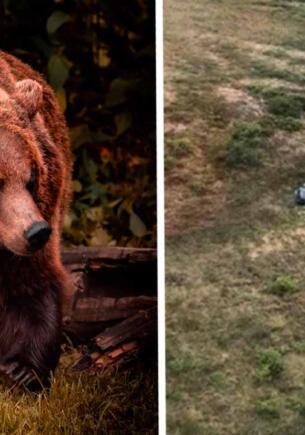 Охотник не спал неделю, каждый вечер сражаясь с медведем