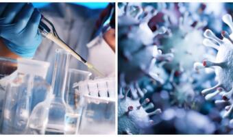 Учёные считают, что штамм коронавируса «Лямбда» может быть устойчив к антителам