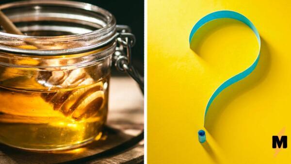 Сладкоежка съела сто граммов мёда за раз. Ночью она поняла, что сладость — мощное слабительное
