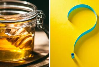 Сладкоежка съела 100 г мёда и отравилась. Винни-Пух тоже не знал, что норма — две ложки в день