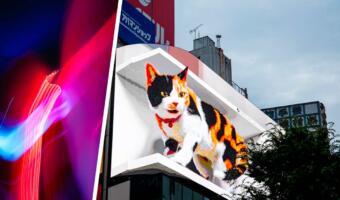 Гигантский 3D-кот на билборде в Токио мяукает как настоящий. Так вот ты какой, Котзилла