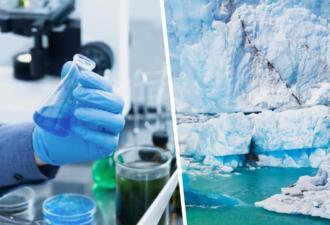 Учёные нашли во льдах 33 вируса, 28 из которых неизвестны человечеству