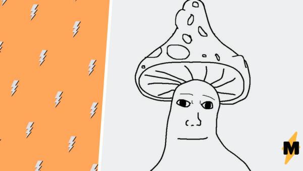 """Мем """"Вояк"""" вернулся с грибом на голове. Теперь шаблоне ещё упоротее, чем был раньше"""