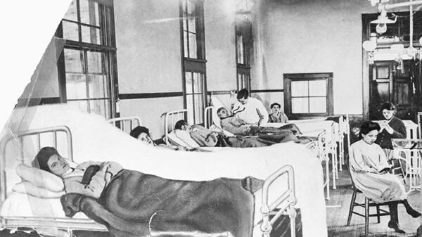 Профессор Гарварда написал пост о носителях болезней, с которым поспорила бы Тифозная Мэри