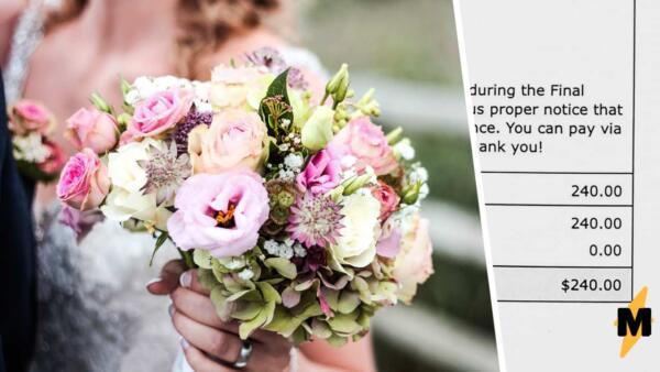 Молодожёны наказали не явившихся на свадьбу гостей. Теперь прогульщики должны оплатить неустойку