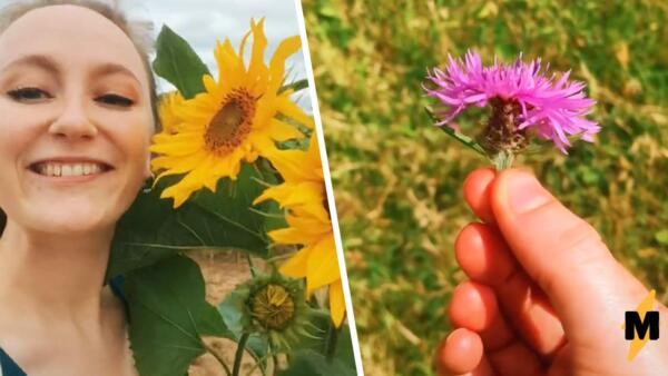 Блогеры собирают цветы, чтобы приготовить еду. Это не голод от отсутствия рекламы, а тренд фуражинг