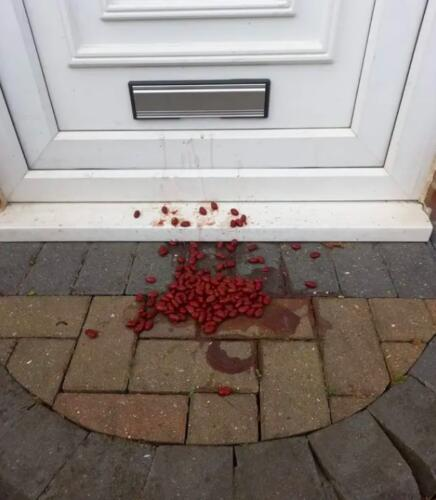 Зачем грабителям из Англии нужна фасоль. С помощью неё воры помечают дома своих жертв