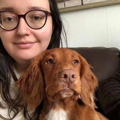 Хозяйка рассказала, как борщевик вызвал анафилактический шок у её пса