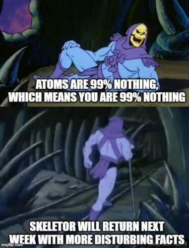 Мемный тренд Skeletor facts
