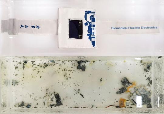 Учёные представили экологичные смарт-часы, растворяющиеся в воде за 40 часов