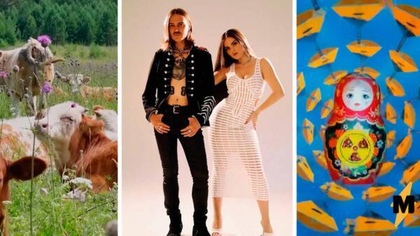 Софья Таюрская и Ильич показали клип с танцующими курицами и свиньями к треку «Ой да на рейве»