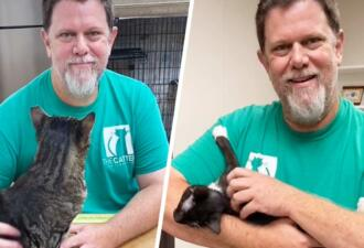 Сотрудник приюта для животных советует держать кота за спину, чтобы он не убегал