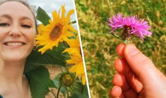 Блогеры собирают грибы и цветы, чтобы сделать еду и напитки. Тренд фуражинг продвигает любовь к природе