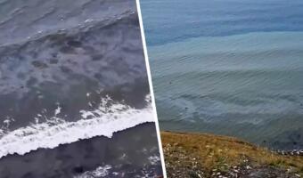 Пятно после разлива нефти подступило к пляжам Анапы, показывает на видео местный житель