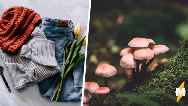 Goblincore - новое направление в моде, которое романтизирует лес и природу