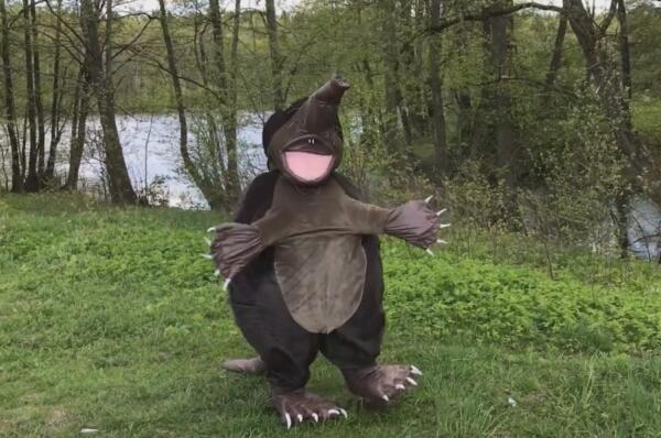 Полуклещ, полумедведка. Калужский эко-герой Хохуля стал героем мемов и шуток