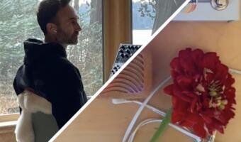 Растения — тоже музыкальный инструмент. Блогер заставил цветы играть лесной эмбиент на синтезаторе