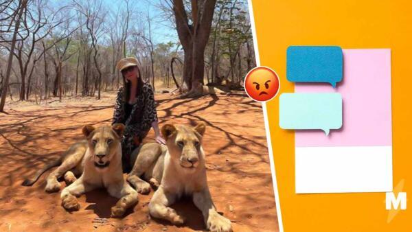 Критики атаковали директ Елены Блиновской из-за эффектного фото со львами. Снимок пришлось удалить