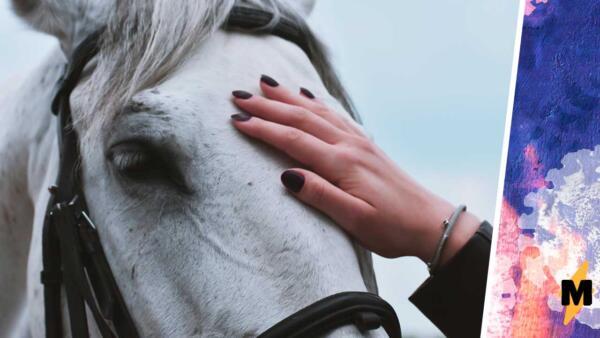 Люди надеются, что глистогонное для лошадей спасёт от Covid-19. Они пьют препарат, вопреки советам врачей