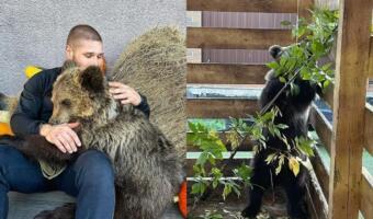 Тарахтит как генератор, когда целуется и ест арбузы. Так медведица Маша кайфует от жизни в Саратове
