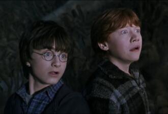 Гарри Поттер, Рон и кот Том. Герои фильма истошно кричат в меме, осуждая ваши привычки