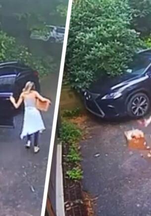 Девушка обнаружила в машине медведя и выгнала его таким визгом, что сигнализация больше не нужна