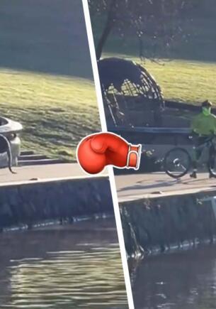 Драчливый кенгуру устроил спарринг с мирным велосипедистом в стиле Кунг-фу Панды