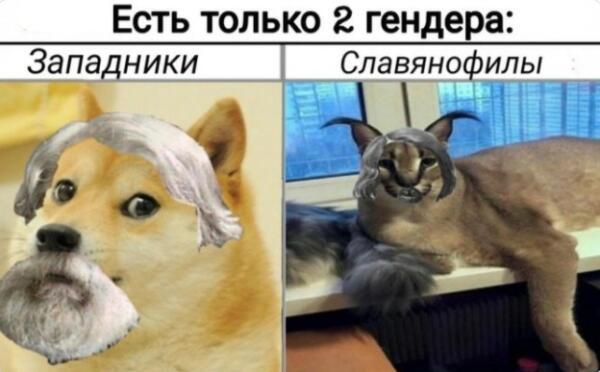 Что такое кукож. Русский аналог кринжа, который любо испытывать