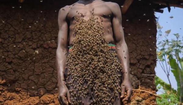 """Кот пчёл уважает, того они не жалят. Самозванный """"Король пчёл"""" разводит насекомых у себя на теле"""