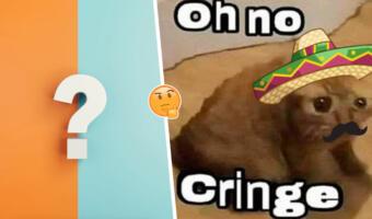 Что значит «Оу ноу, кринге». Фразой мексиканского кота из мема люди в Сети описывают чувство стыда
