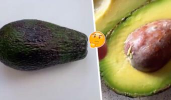 Как самостоятельно вырастить авокадо дома? Способ для тех, кто хочет сэкономить время и силы