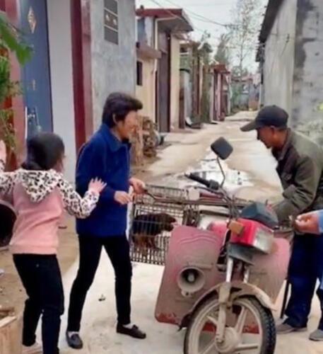 Девочка из Китая в слезах умоляла не продавать домашнего пса, но бабушка отдала его за 111 рублей